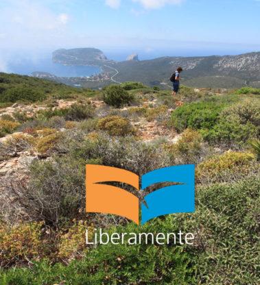 Tecnico del digital marketing turistico – SASSARI