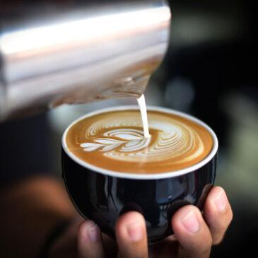 Preparazione di prodotti di caffetteria e di cocktail e bevande alcoliche / Allestimento e pulizia della sala_Programma TVB – VILLACIDRO