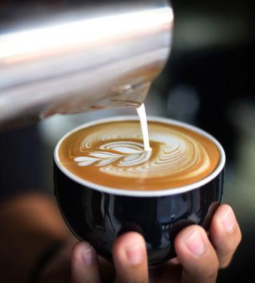Preparazione di prodotti di caffetteria e di cocktail e bevande alcoliche / Allestimento e pulizia della sala_Programma TVB – VILLACIDRO – CORSO CONCLUSO